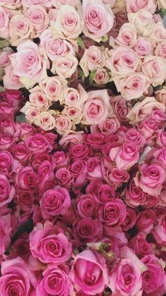 *** Build a Bear BABW FUCHSIA Pink Flower BLOOMIN HEADBAND NEW w// tags