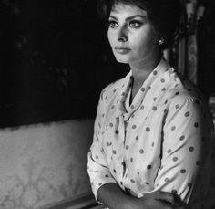 Carlo Ponti, Sophia Loren Images, 20th Century Fashion, Italian Beauty, Marilyn Monroe Photos, Catherine Deneuve, Cary Grant, Michael Fassbender, Life Magazine
