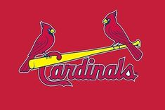 15 Ways To Know If You're A St. Louis Cardinals Fan