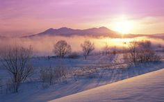 Hokkaido Japan | Snow, Fog, Winter, Hokkaido, Japan, Nature | Free HD wallpapers