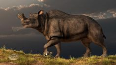 Google Image Result for http://images.fineartamerica.com/images-medium-large/brontotherium-daniel-eskridge.jpg