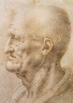 We can learn a great deal from analyzing Leonardo da Vinci drawings. Here are five lessons from this Renaissance master. Renaissance Kunst, High Renaissance, Leonardo Da Vinci Zeichnungen, Male Profile, Italian Painters, Italian Artist, Oil Painting Reproductions, Old Master, Renoir