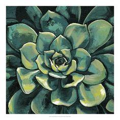 World Art Group, Succulent Bloom I, Megan Meagher