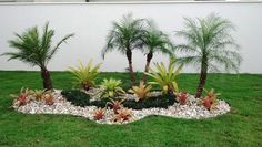 Beginner's Guide To Tropical Landscaping Design Plans – My Best Rock Landscaping Ideas Rock Garden Landscaping, Front Yard Landscaping, Garden Trees, Beautiful Gardens, Small Gardens, Palm Trees Landscaping, Tropical Garden, Tropical Landscaping, Modern Garden