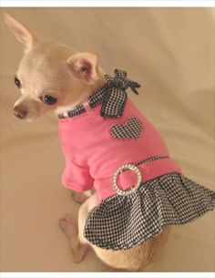 Dog Clothes Girl Xs Dog Clothes In Clearance Girl Dog Clothes, Cheap Dog Clothes, Large Dog Clothes, Puppy Clothes, Pet Fashion, Animal Fashion, Dog Christmas Clothes, Dog Closet, Led Dog Collar
