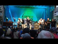 The Legendary Downchild Blues Band on June 2019 On Bloor Street at The Toronto Jazz Festival with Dan Ackroyd Jazz Festival, Blue Band, Toronto, Dan, Blues, Concert, Concerts
