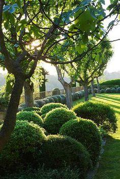 Clos Pascal, Vesian Garden in France