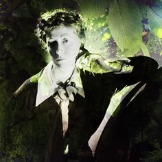 Marianne Moore and the Crowning Curio: How a Poem Saved One of the World's Rarest and Most Majestic Trees | Brain Pickings