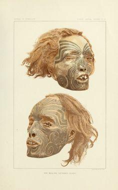"nemfrog: "" ""Two beautifully tattooed heads (from New Zealand) are in the collection of the Army Medical Museum of Washington, D.C…"" Smithsonian Bureau of Ethnology. Maori Face Tattoo, Ta Moko Tattoo, Tahiti, Art Maori, Maori Symbols, Nz History, Maori People, Maori Designs, Wax Museum"