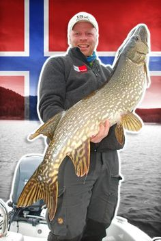 Hechtangeln am Kroederfjord in Norwegen | Pike fishing in lake Kroederen in Norway