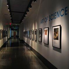 The Art of Science Museums, Liberty, Science, Display, Instagram, Design, Art, Floor Space, Art Background