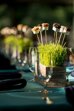 Rustic Wheatgrass and Marshmallow Centerpiece for Camp Color War Bat Mitzvah at…