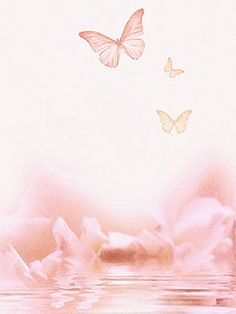 Download 240x320 «Бабочки» Cell Phone Wallpaper. Category: Insects