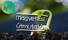 MAGVETÉS LÉPÉSRŐL-LÉPÉSRE - VIDEÓ MÁRKKAL - kert.tv Lawn And Garden