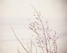 Minimalist Nature Photography by JillianAudreyDesigns #Etsy