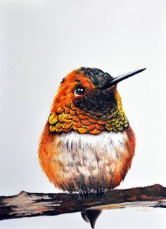 pencil art 40 Color Pencil Drawings To Having You Cooing With Joy - Bored Art Bird Drawings, Realistic Drawings, Colorful Drawings, Animal Drawings, Horse Drawings, Colored Pencil Tutorial, Color Pencil Art, Color Pencil Drawings, Animal Illustrations