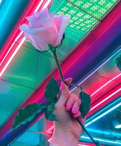 rose   nails   plants   neon