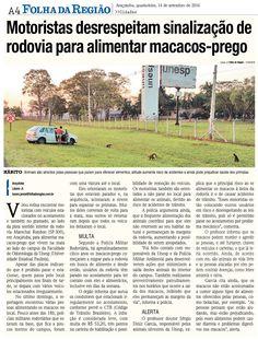 Motoristas desrespeitam sinalização de rodovia para alimentar macacos-prego. Fonte: Folha da Região