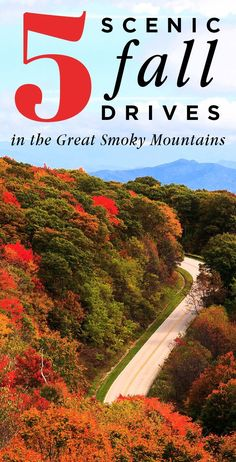 Top 5 Scenic Fall Drives in the Smoky Mountains Fall Vacations, Mountain Vacations, Vacation Trips, Vacation Ideas, Smoky Mountains Tennessee, Great Smoky Mountains, Smokey Mountain, East Tennessee, Townsend Tennessee