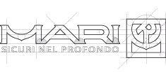 struttura marchio Ing. MARI & C. srl
