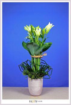 [ 플라워아트21TV - 성전꽃꽂이 동영상강좌 작품 ] ◇ http://fa21tv.com ◇ #성전꽃꽂이#성전꽃꽂이동영상 강의#꽃꽂이#꽃꽂이동영상#플라워#꽃#flower#flowerstyles#flowerstagram#flowers art#flowerchurch#beautiful#flowerdesign#florist#collarful#flowerarrange#churchflower#floraldesign#bouquet#luxury#pic#flollow#flowerlove#photo#cool#꽃스타그램#flowerarrangements#조유미#부케#잡지촬영