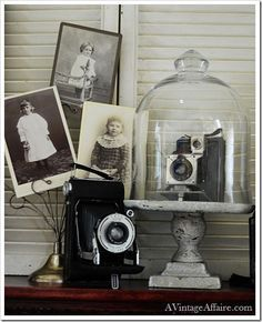 Vintage camera inside cloche with vintage photographs displayed next to the enclosed camera.