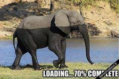 image drole - Loading...