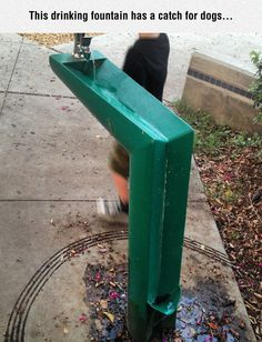 Funny pictures about Clever Drinking Fountain. Oh, and cool pics about Clever Drinking Fountain. Also, Clever Drinking Fountain photos. Funny Today, Leadership, Ignorant, Drinking Fountain, Great Inventions, Little Designs, Solution, Funny Photos, Funny Images