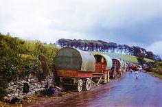 Gypsy Family's Wagons, Ireland, 1954 - On Tumblr    Pinned by www.eddiemercer.com in Pensacola, FL