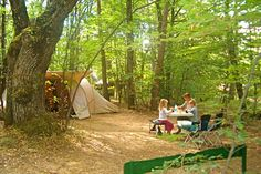 Drôme, camping le grand bois, met zwembad