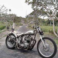 Triumph Chopper, Bobber Bikes, Triumph Scrambler, Bobber Chopper, Triumph Motorcycles, Sportbikes, Custom Bikes, Cool Bikes, Biker