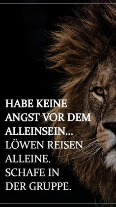 Tattoos, Lion Quotes, Lion Pictures, Being Alone, Leo Sign, Good Sayings, Tatuajes, Tattoo, Tattos