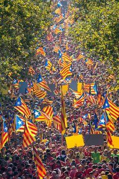 """V""- Diada 2014, Barcelona"