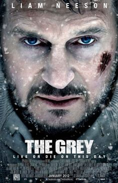The Grey (2012)  http://www.imdb.com/title/tt1601913/