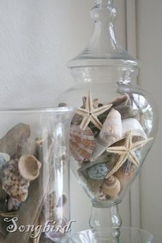 at the Nest Shells and sea stars looking pretty in glass vases and apothecary jars.Shells and sea stars looking pretty in glass vases and apothecary jars. Beach Theme Bathroom, Nautical Bathrooms, Beach Room, Beach Bathrooms, Costal Bathroom, Mermaid Bathroom, Mermaid Room, Beach Cottage Style, Beach House Decor