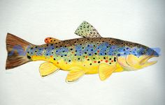 Brown Trout Watercolor 12 x 18 by somosomo on Etsy