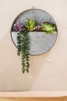 LOVE this galvanized circle hanging succulent planter! :) 44 The Best Hanging Plants Ideas to Indoor Decoration in Your Home Buy Succulents, Hanging Succulents, Artificial Succulents, Succulent Arrangements, Hanging Planters, Artificial Flowers, Succulent Planters, Succulents Wallpaper, Succulents Drawing