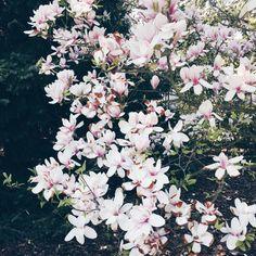 #summer#dreambabe#sun#shine Memories are still here, dont be afraid