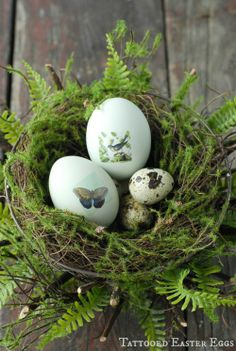 14 Alternative DIY Easter Egg Decor Ideas | Shelterness