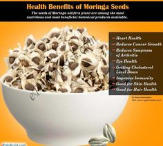 Moringa seeds offer various health benefits and are also known to be used as nutritional supplements Benefits Of Moringa Seeds, Matcha Benefits, Coconut Health Benefits, Nut Benefits, Stomach Ulcers, Healthy Oils, Healthy Recipes, Herbal Remedies, Health Remedies