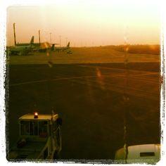 The morning flight