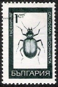 Znaczek: Forest Caterpillar Hunter (Calosoma szcophanta) (Bułgaria) (Insects) Mi:BG 1826,Sn:BG 1703,Yt:BG 1613,AFA:BG 1791