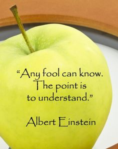 An interesting short read: The Wisdom ol Albert Einstein ... a Man Ahead of his Time.