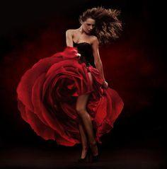flamenco dance | Ballet Photos a… Flamenco Dancer Flamenco music