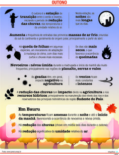 JuRehder - Infográfico sobre o outono para o Jornal da Cidade - Bauru/SP.