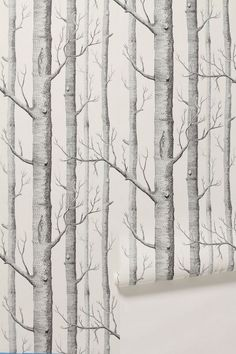 Anthropologie's Woods wallpaper