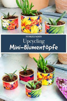 Urban Gardening - Wie aus alten Dosen bunte Upcycling-Blumentöpfe für Balkon und Fensterbrett werden