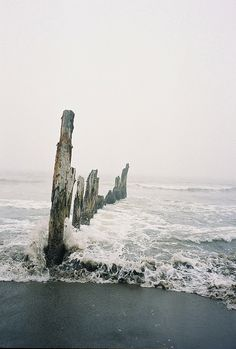 Meet me here between the waves. We must do some sea swimming together soon.