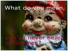 Gnomes are a favorite teaching meme.