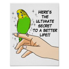 Budgies make life better poster